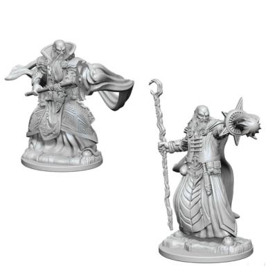 D&D Nolzur's Marvelous Miniatures: Human Wizard Male