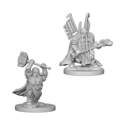 D&D Nolzur's Marvelous Miniatures: Dwarf Paladin Male
