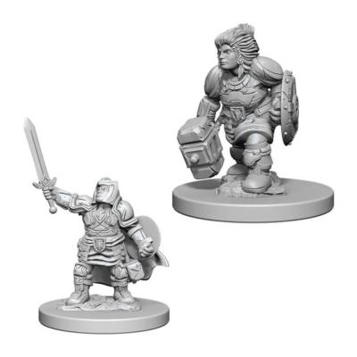D&D Nolzur's Marvelous Miniatures: Dwarf Paladin Female