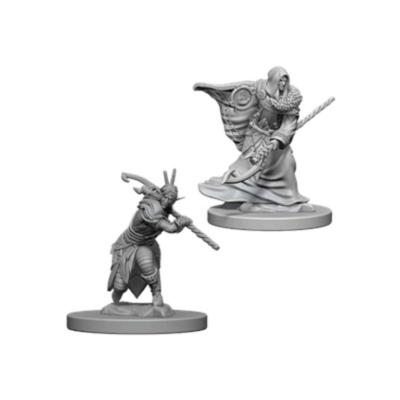 D&D Nolzur's Marvelous Miniatures: Elf Druid Male