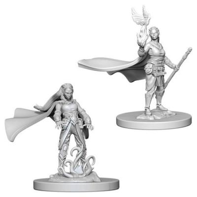 D&D Nolzur's Marvelous Miniatures: Elf Druid Female