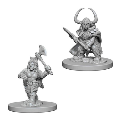 D&D Nolzur's Marvelous Miniatures: Dwarf Barbarian Female