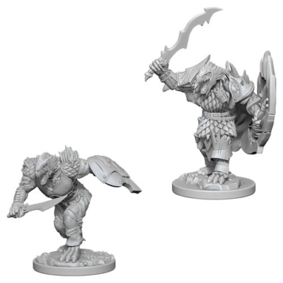 D&D Nolzur's Marvelous Miniatures: Dragonborn Fighter Male
