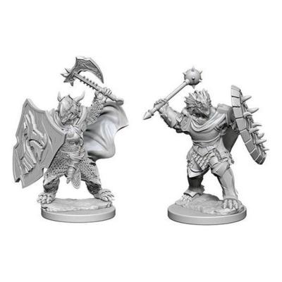 D&D Nolzur's Marvelous Miniatures: Dragonborn Paladin Male Wave 1
