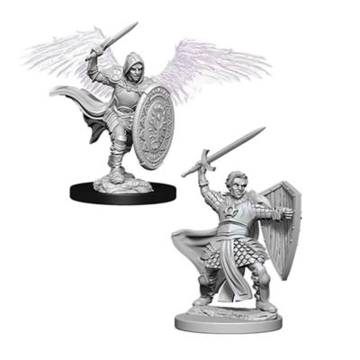 D&D Nolzur's Marvelous Miniatures: Aasimar Paladin Male