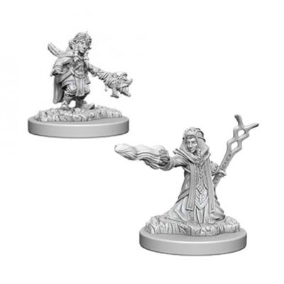 D&D Nolzur's Marvelous Miniatures: Gnome Wizard Female