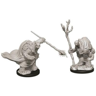 D&D Nolzur's Marvelous Miniatures: Tortle Adventurers