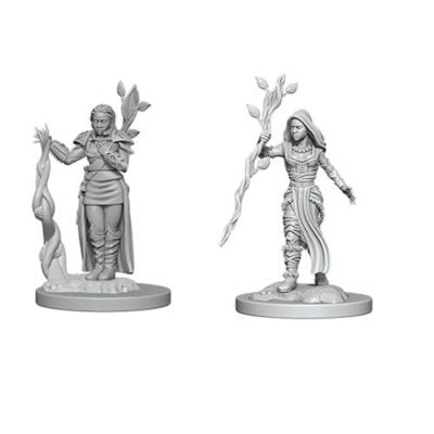 D&D Nolzur's Marvelous Miniatures: Human Druid Female Wave1