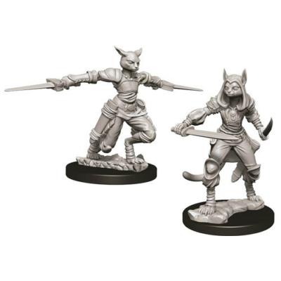 D&D Nolzur's Marvelous Miniatures: Tabaxi Rogue Female