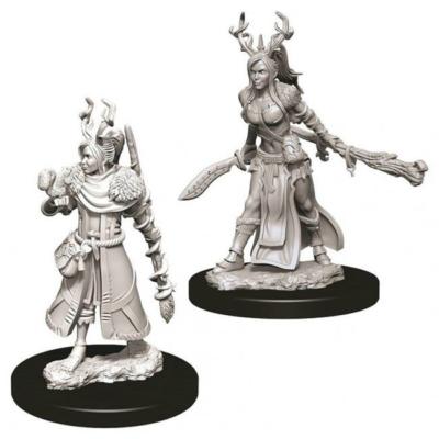D&D Nolzur's Marvelous Miniatures: Human Druid Female Wave12