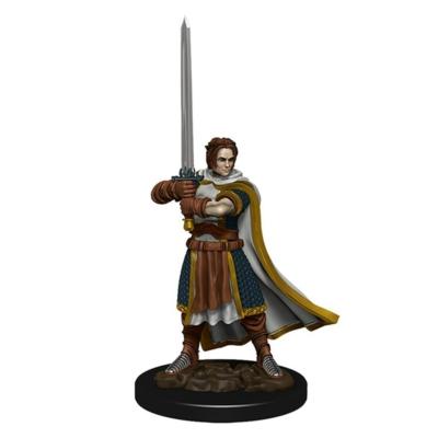 D&D Icons: Human Male Cleric Premium Prepainted Miniature