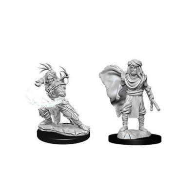 D&D Nolzur's Marvelous Miniatures: Human Druid Male Wave12