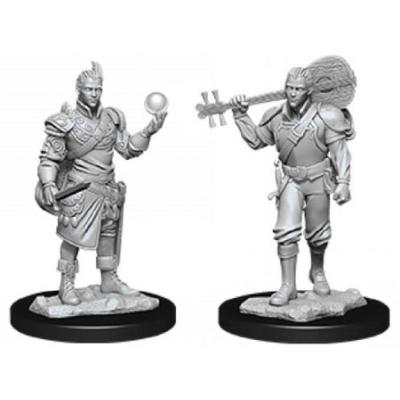 D&D Nolzur's Marvelous Miniatures: Half-Elf Bard Male