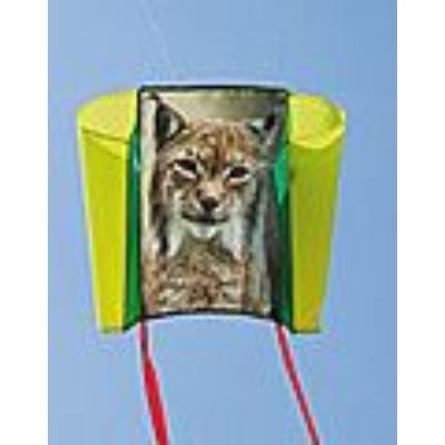 Sleddy Lynx hiúz