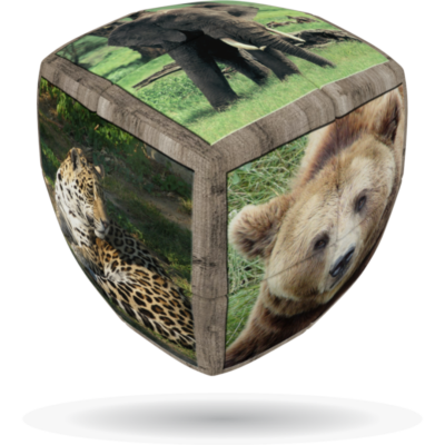 V-Cube 2x2 versenykocka, lekerekített, Vadállatok